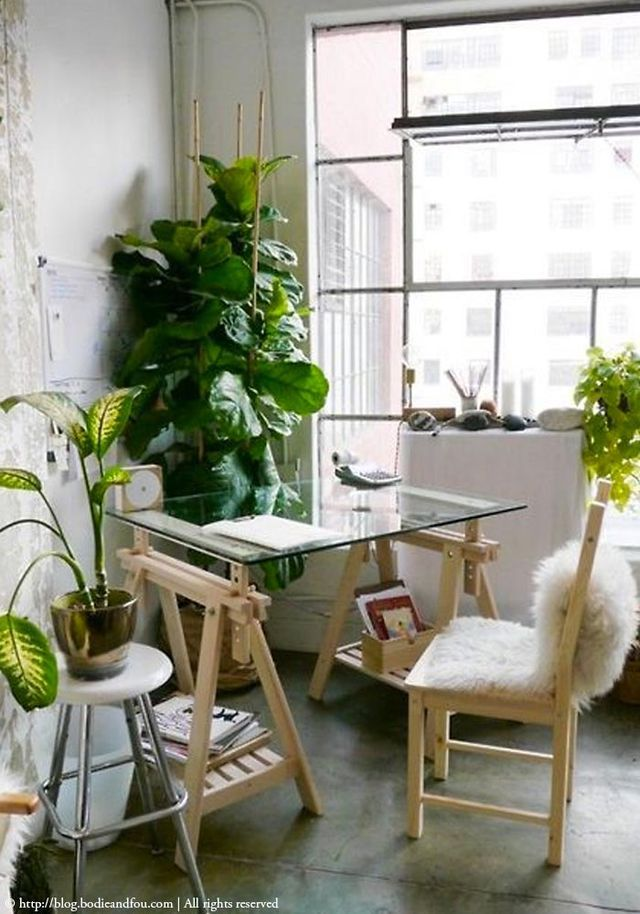 121 best urban jungle images on pinterest plants indoor for Decoration urban jungle