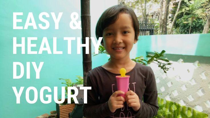 Easy & Healthy DIY Yogurt Popsicle