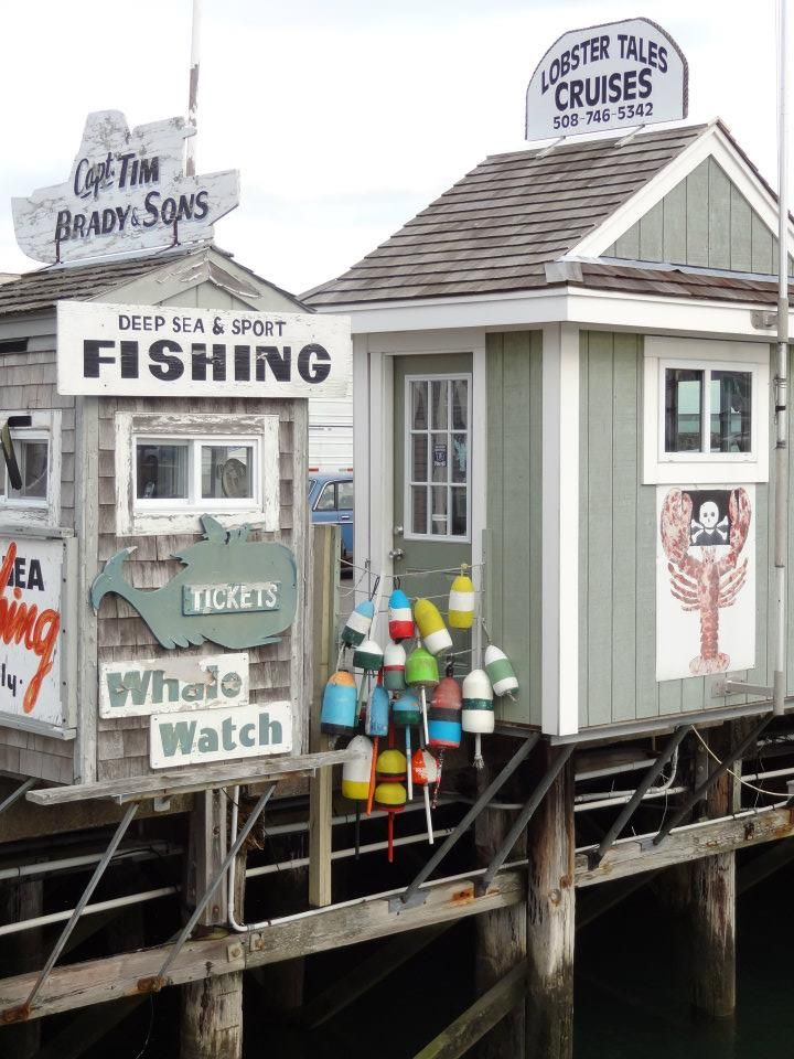 Plymouth ma massachusetts pinterest virginia for Fishing charters plymouth ma