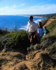 Coastal walks at Cape Schanck