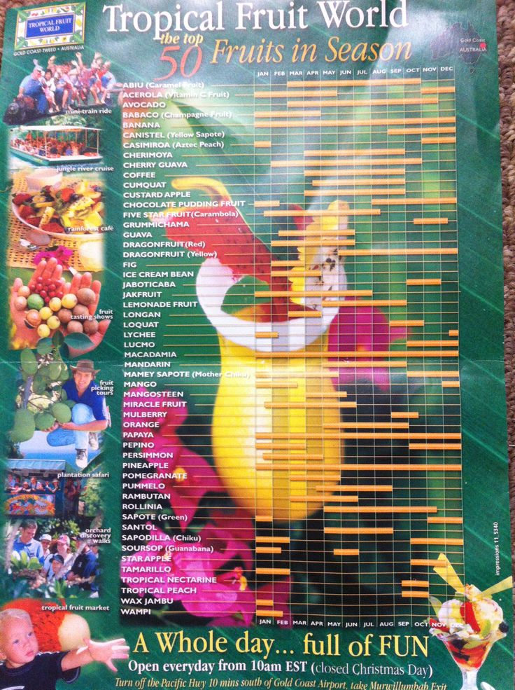 What fruits are in season chart from Tropical Fruit World near the NSW & QLD border of Australia