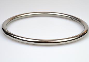 Titanium eternity collar (lighter than steel + would match our wedding bands).  Allen screw lock.  $150