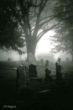 Mt. Moriah Cemetery. Photo by Amy Clark.