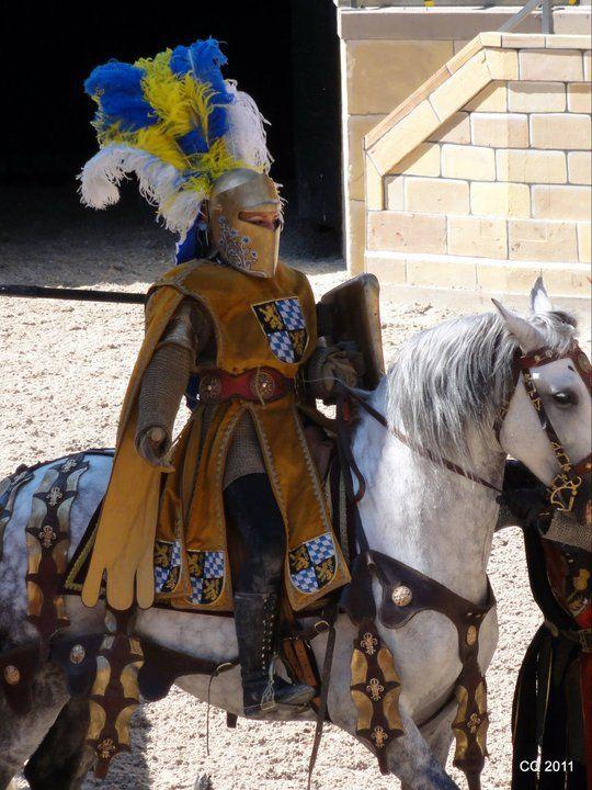 """Articles de jimmyjoice taggés """"florie thibert spectacle equestre chevalerie jeux voltige"""" - Jimmy & Flo ... Spectacle equestre ... - Skyrock.com"""
