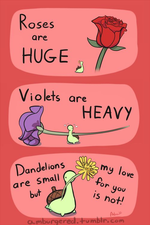 Some of my favourite Sheldon the tiny dinosaur who thinks he's a turtle pictures, enjoy! - Imgur