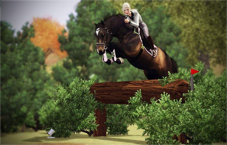 Gender: Mare Breed: Dutch Warmblood Colour: Dark Bay Age: 7 years Disciplines: Show Jumping, Cross Traits: Obedient, Friendly, Agile