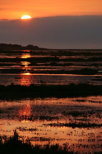 How about a photo of a glorious sunset over Stiffkey Marshes in North Norfolk. By the way, #NoFilter