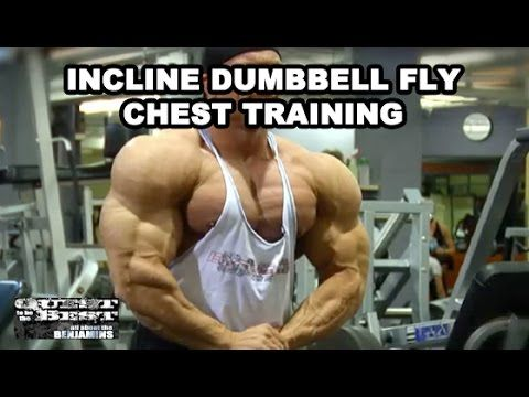 Incline Dumbell Fly Chest Training With Ben Pakulski - YouTube