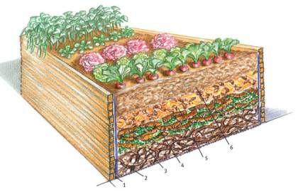 Ob Gemüse oder wunderschöne Blumenpracht, auf Hochbeeten können Sie Ihre Gartenträume auf kleinem Raum verwirklichen!