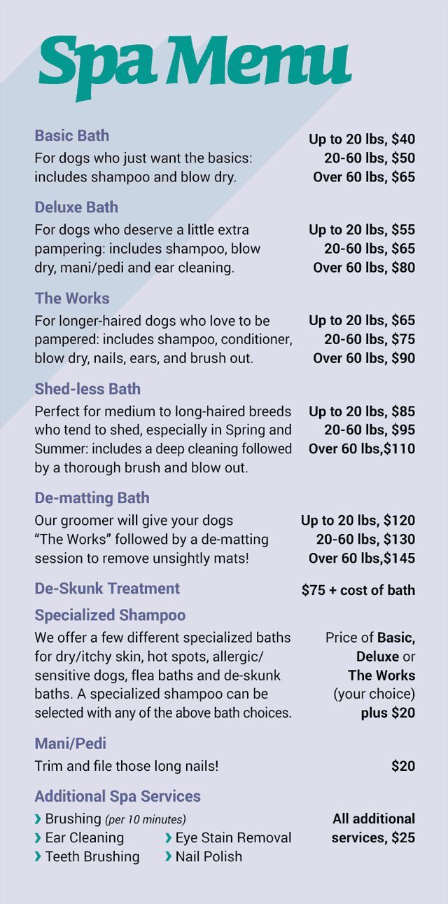 4 Simple Tips For Dog Grooming At Home In 2020 Dog Grooming Salons Dog Spa Pet Grooming Business