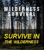survival tips for living off the land & surviving in the wilderness