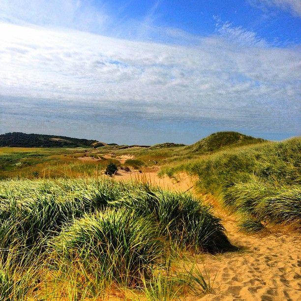 311 Best Cape Cod Adventure Images On Pinterest