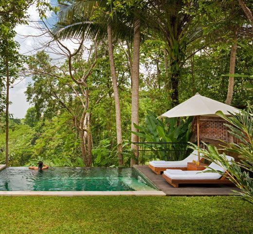 Infinity pool at the edge of a cliff, Uma Ubud, Bali: Swimming Pools, Dream House, As, Garden, Bali Indonesia