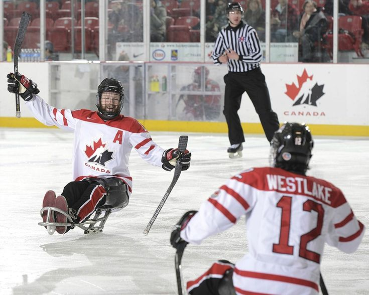 Hockey sur luge : Jeux paralympiques de Sotchi 2014