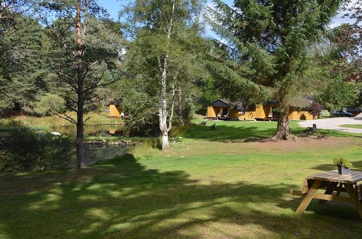 Fairwinds Chalets, Carrbridge, Inverness-shire, The Highlands, Scotland. Holiday. Travel. Self Catering. Cottage. Dog Friendly. https://www.theholidaycottages.co.uk/.