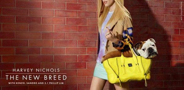http://pegasebuzz.com/leblog/ | Dogs in Fashion : Miles Aldridge for Harvey Nichols Spring 2013 Campaign