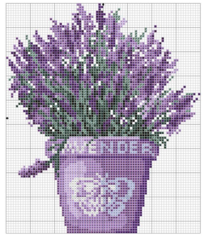 Pot of lavender