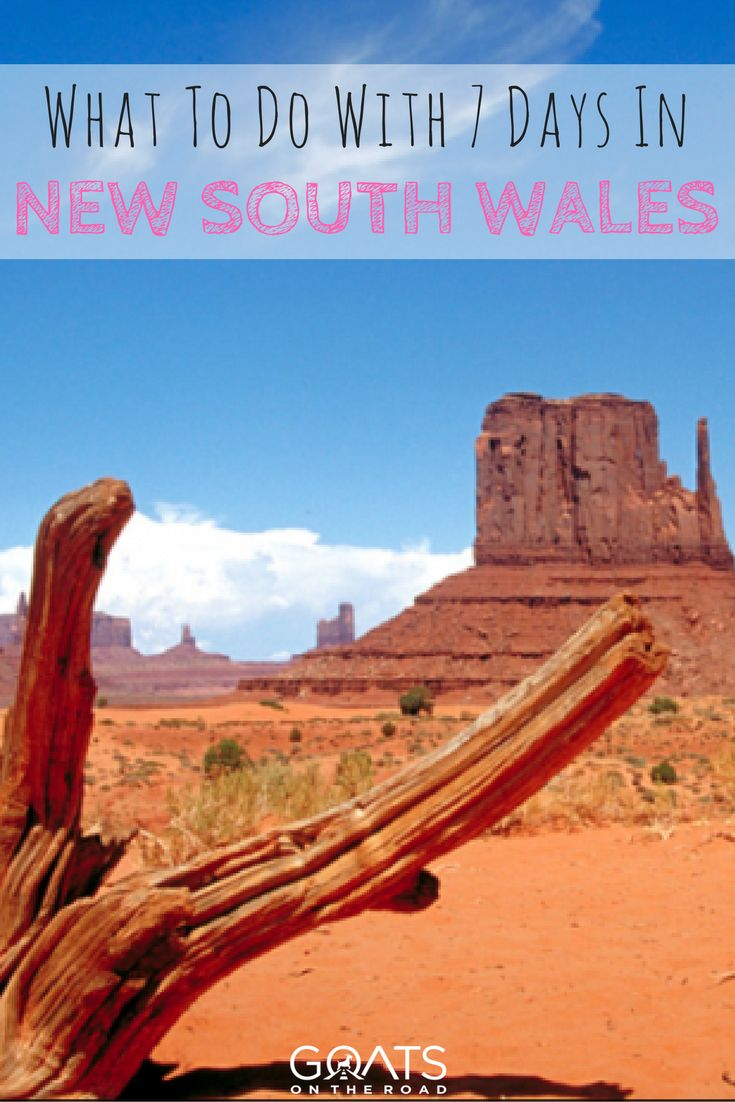 Travel Guide To New South Wales | Best Things To Do in NSW | Australia Travel Itinerary | Sydney | Blue Mountains | Hunter Valley | Australian Outback | Lord House Island | #nsw #newsouthwales #australia #sydney #australiatravel #australiabucketlist