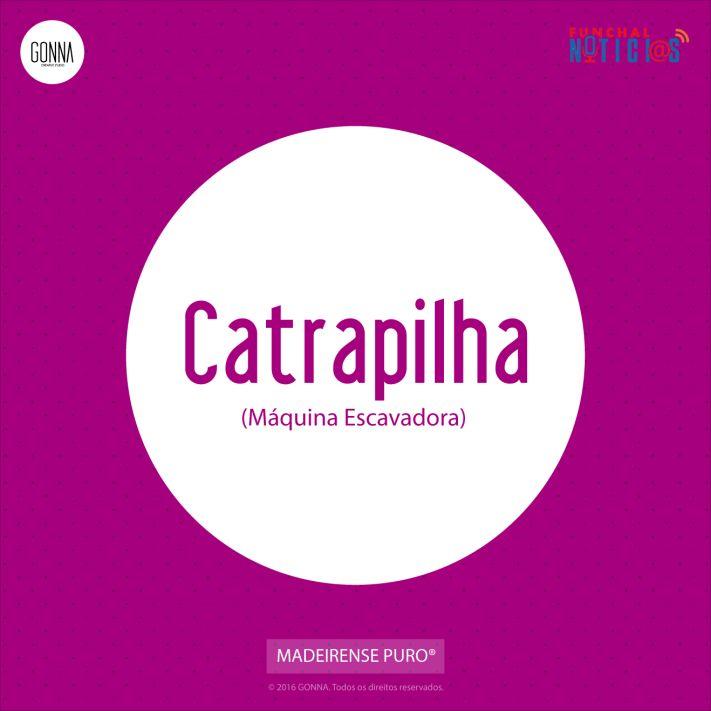 madeirense-puro-FN-catrapilha