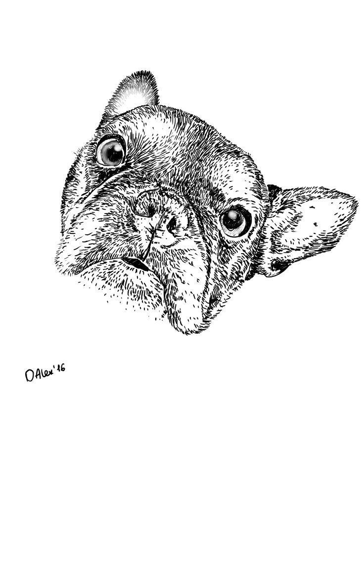 OAlexandra_art_SAI  tattoo  french bulldog Французский бульдог