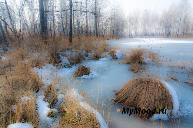 Снежно - замерзшее настроение лесного озера, но настроение от этого не портится, это красота неземная, поднимает настроение