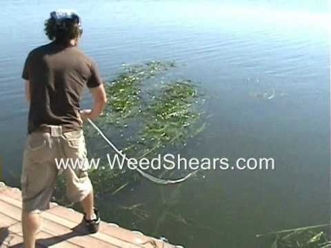 ▶ V Shaped Cutter for Removing Lake and Pond Weed for hydrilla milfoil cattails lily pads - YouTube