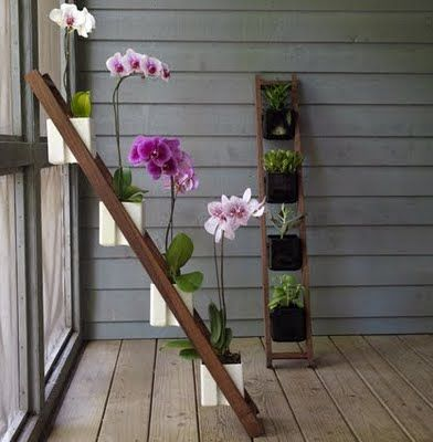An awesome way to get #plants inside the #home: a vertical plant ladder! Create fresh #air.