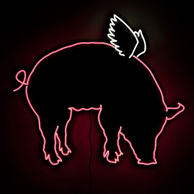 pig with wings by daniel bruce thefancy com more pigs fly flying pigs ...