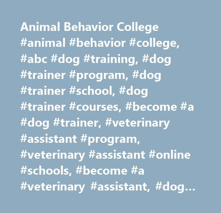 Animal Behavior College #animal #behavior #college, #abc #dog #training, #dog #trainer #program, #dog #trainer #school, #dog #trainer #courses, #become #a #dog #trainer, #veterinary #assistant #program, #veterinary #assistant #online #schools, #become #a #veterinary #assistant, #dog #groomer #courses #online, #dog #groomer #program, #dog #groomer #school, #dog #training #career, #work #with #animals, #careers #with #animals, #cat #training #course, #cat #training, #become #a #cat #trainer…