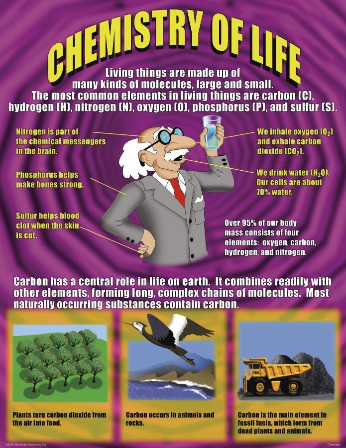 Best 25+ Chemistry Posters ideas on Pinterest | Chemistry, Chemist ...