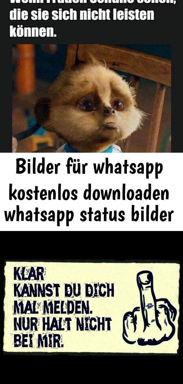 Status bilder kostenlos whatsapp Lustige Minions