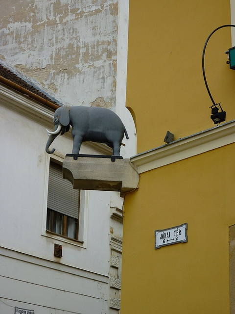 Elephant House in Pécs, Hungary