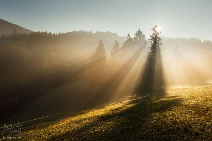 Krajina zaliata slnečnými lúčmi prechádzajúcimi cez hmlu počas východu slnka