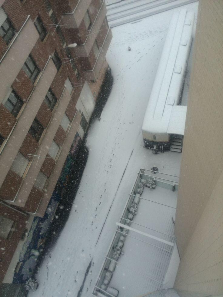 Terraza y vagón nevados 04.02.2015