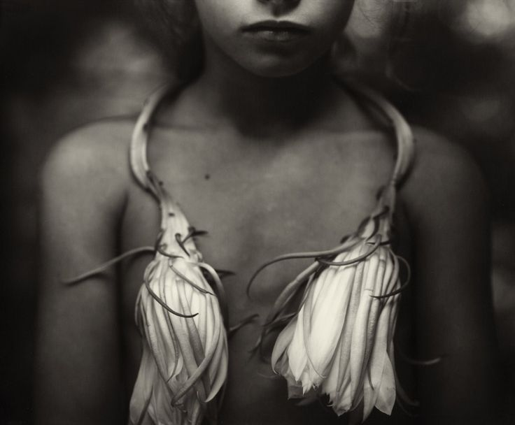 "In the fall of 1992, a traveling exhibit opened at the Institute of Contemporary Art in Philadelphia. The collection was called ""Immediate Family"", and it was by a young and lesser known photographer by the name of Sally Mann."