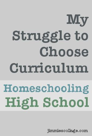Home school curriculum ideas for high schoolers?
