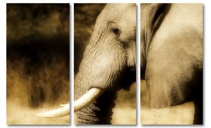 20 beste idee n over olifant schilderijen op pinterest for Schilderij olifant