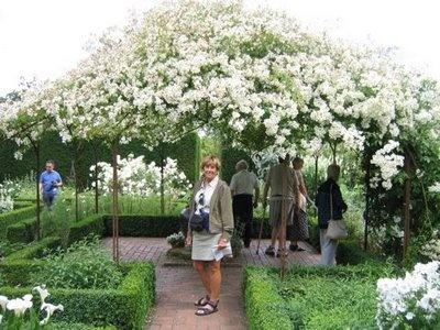 ROCK ROSE: GARDENS AND GARDEN ROOMS: White Gardens, Garden Ideas, Garden Tour, Roses Garden