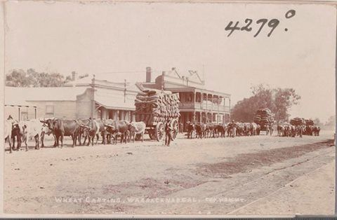 Wheat carting, Warracknabeal, 1906. Photographer: J.L Discaciati. State Library of Victoria Image H96.160/1296.