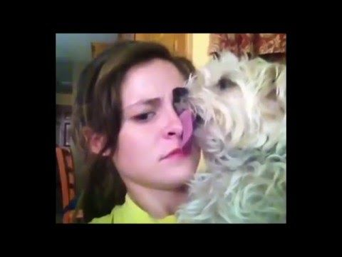 Try Not To Laugh Or Grin *HARD VERSION* - Funny Videos (Compilation 2015) - http://insurancequindio.info/try-not-to-laugh-or-grin-hard-version-funny-videos-compilation-2015/