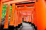 Fushimi Inari-taisha in Kyoto - the head of more than10,000 Inari shrines - 伏見稲荷大社 7/19/14 AM