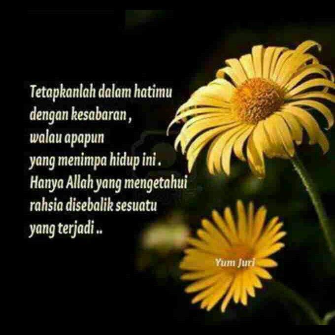 #allah #suka pada #orang yang #sabar -_- maka #aku #redha atas segala #dugaanMu -_- hanya #Kamu tahu #rahsia di sebalik #hatiku -_-