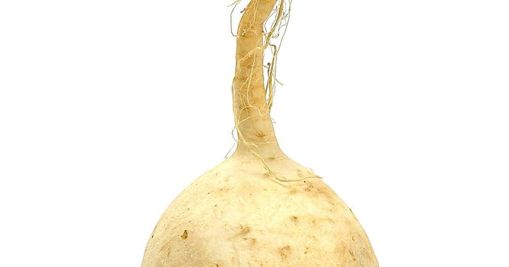 Las zanahorias y los nabos son vegetales de raíz, lo que significa que crecen debajo de la tierra.  Ambos alimentos son altos en una serie de nutrientes, incluyendo fibra y vitamina A, y pueden ser una parte nutritiva de la dieta cuando se ponen a freír, se hornean o se asan.