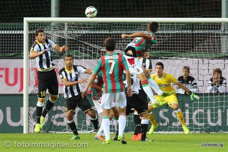 Udineseblog - La gallery di Udinese-Ternana 5-1