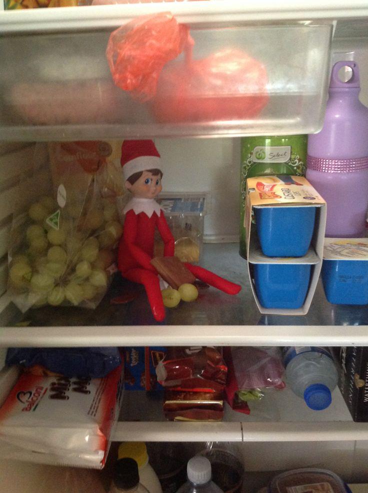 Day 10 - Picnic in the fridge