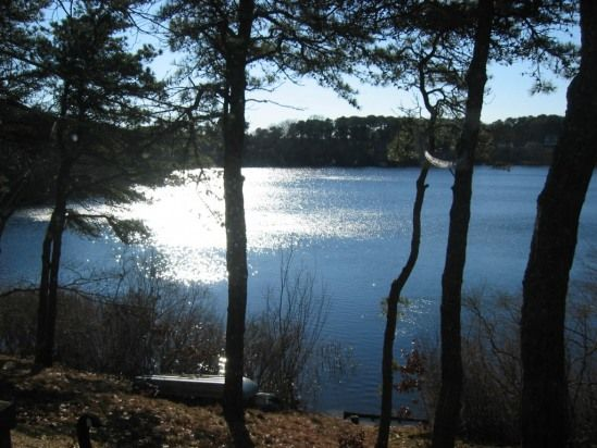 "One of the many kettle ponds on lower Cape Cod, this resembles ""Mill Pond"" behind Claire's temporary home in Gull Harbor"