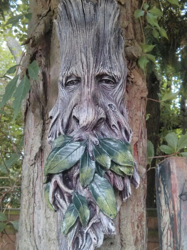 17 Best Images About Tree Faces Art On Pinterest Trees