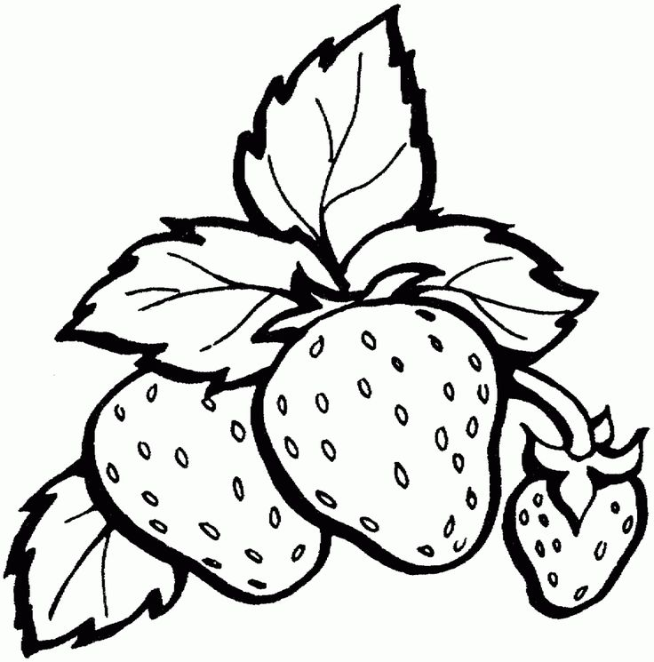 mewarnai buah