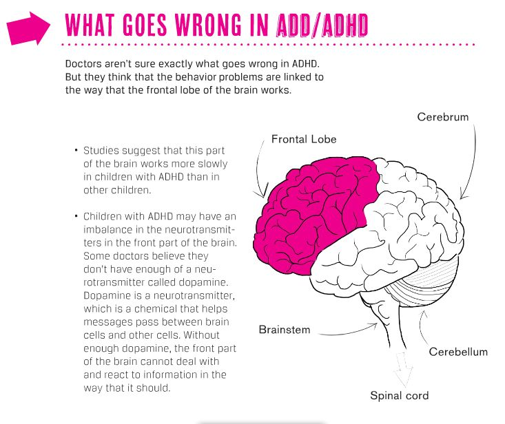 CHADD - The National Resource on ADHD
