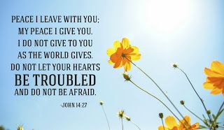 Daily Devotions:   John 14:27  Peace I leave with you